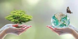 Dita Boterore e Mjedisit